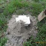 床沈めの箱を基礎の下に埋めます