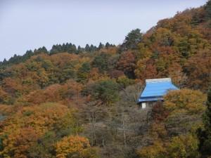 奥永源寺の紅葉
