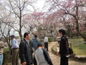 4月京都西行サクラ